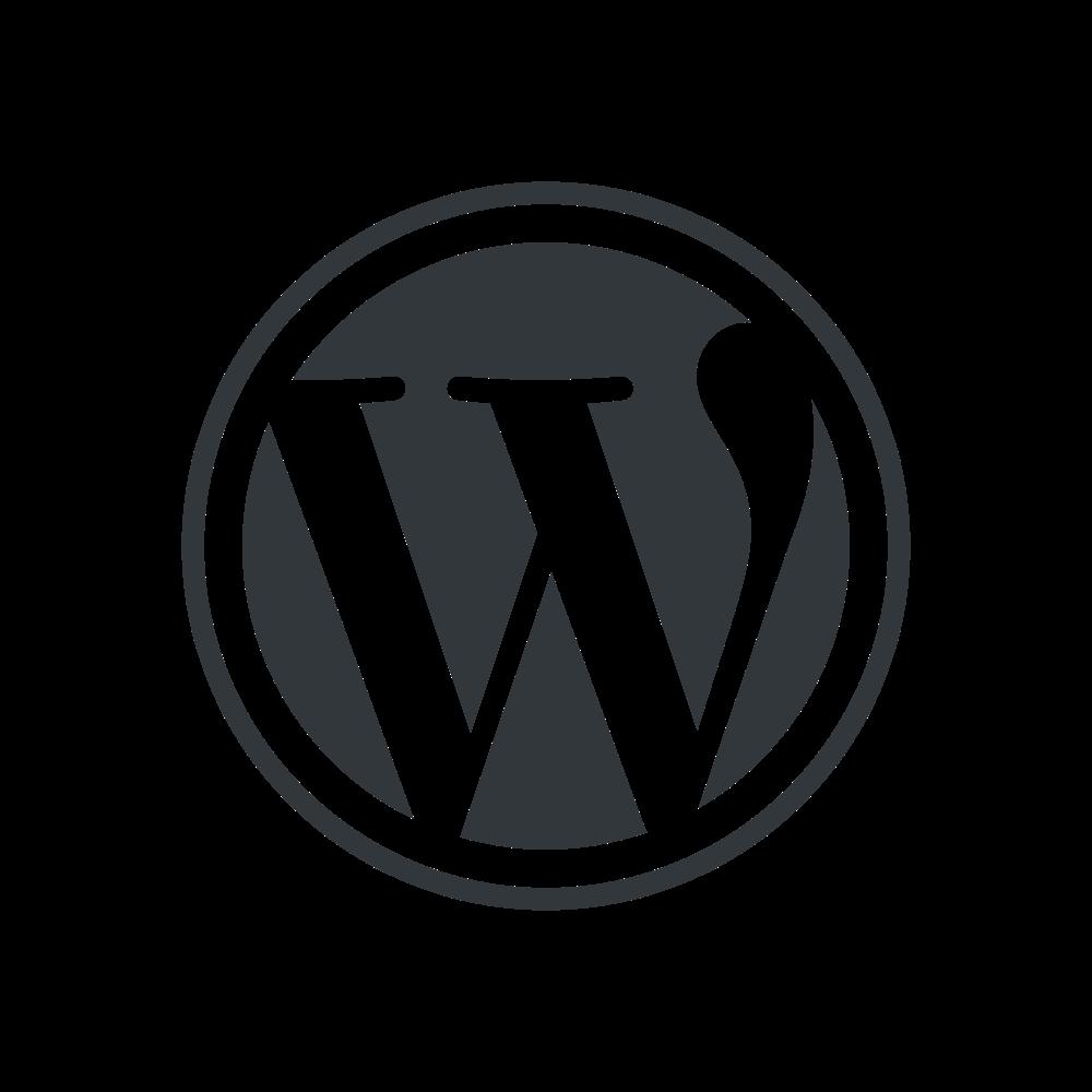 Come funziona WordPress Portfolio con temi e plugin