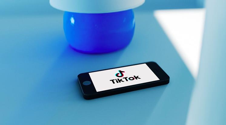 Si può vedere chi visualizza i video su TikTok?