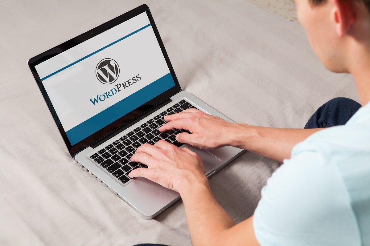 Programmatore WordPress