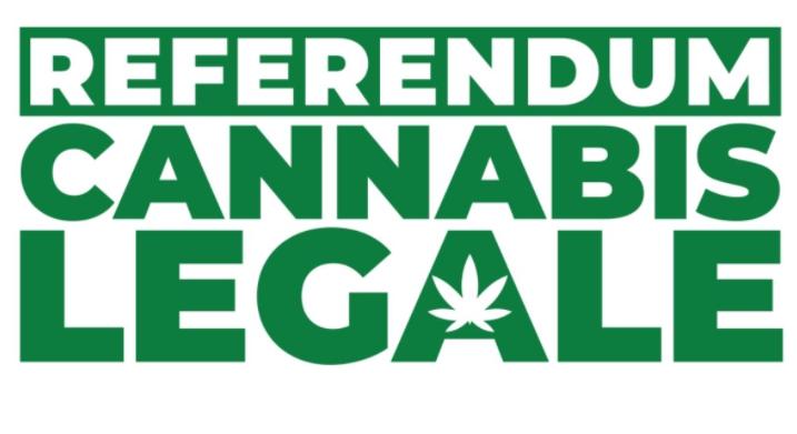 Referendumcannabis.it è uno dei referendum online più partecipati di sempre?